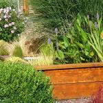 Création d'un bassin terrasse