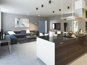 salon maison architecte